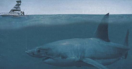 Megalodon Köpekbalığı, köpek balığı türleri, köpekbalığı türleri